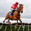 Laurina, with Paul Townend up, jumps the last on the way to winning the Mares Novice Hurdle Championship Final at Fairyhouse in April. Photo: Sportsfile
