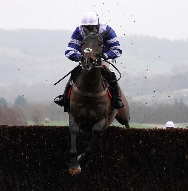 Bryony Frost and Frodon clear the last to win The Caspian Caviar Gold Cup at Cheltenham. Photo: Getty