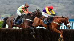 A Rivalry Renewed: Native River and Richard Johnson negotiate the last ahead of Might Bite (Nico de Boinville) on their way to landing last season's Cheltenham Gold Cup – the pair are set to clash once more at Kempton this afternoon. Photo: Seb Daly/Sportsfile