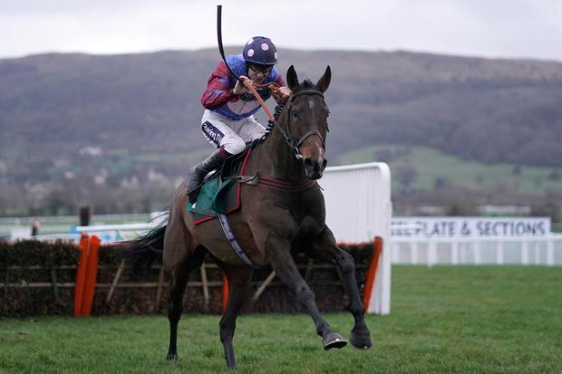 Paisley Park, under Aidan Coleman, on the way to victory at Cheltenham in January over the same distance. Photo: Getty