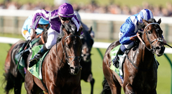 Donnacha O'Brien riding Ten Sovereigns wins The Juddmonte Middle Park Stakes at Newmarket last September. Photo: Getty Images