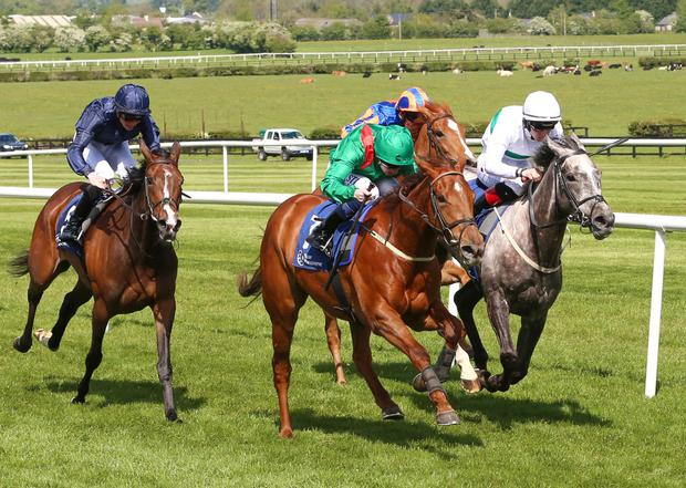 Tarnawa and Chris Weld winning from Who's Steph and Delphinia at Naas. Photo: Alain Barr