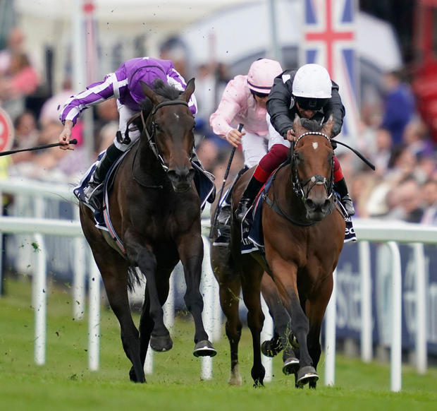 Pink Dogwood (left), playing second fiddle to Annapurna at Epsom, can go one better in today's Curragh showpiece