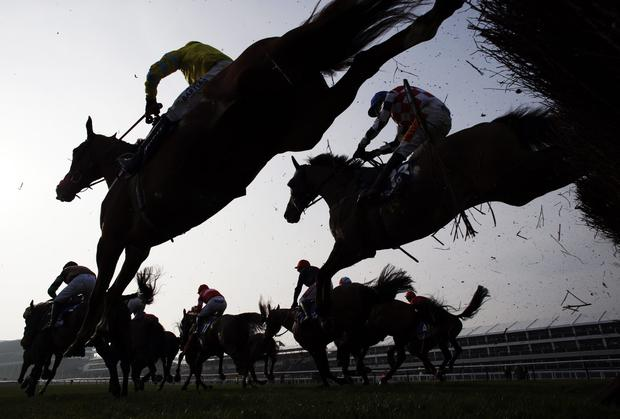 'Mullins's six-year-old is rated 9lb superior to her seven rivals and was chasing her fifth win in succession - three of which were at Listed level - when coming home second in a Group Three at Haydock last month.' Stock photo: AFP/Getty Images