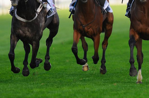 The Galway Hurdle sets a fascinating puzzle as always. This race, with its intoxicating cocktail of speed and power, heavily laced with a jockey's urge for recklessness and their thrill for danger, has midwifed some spectacular moments in time. Stock image