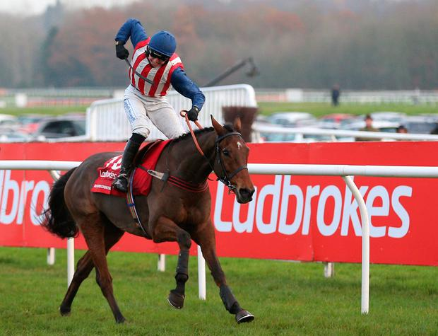 Ben Jones is in celebratory mood as De Rasher Counter passes the winning post in the Ladbrokes Trophy Chase at Newbury. Photo: Nigel French