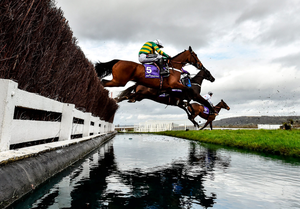 Champ, with Barry Geraghty up, clear the water en route to completing a remarkable come-from-behind win in the RSA Insurance Novices' Chase in Cheltenham. Photo: David Fitzgerald/Sportsfile