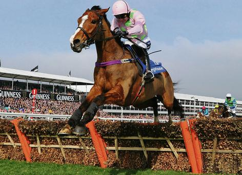 Ruby Walsh clears the last on Faugheen on the way to victory in the Novices' Hurdle at Cheltenham yesterday