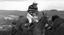 L'Escargot jumps the final fence on the way to victory under Tommy Carberry in the 1970 Cheltenham Gold Cup