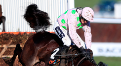 Benie Des Dieux, ridden by jockey Ruby Walsh, comes crashing down at the last in the Mares' Hurdle on the opening day of the Cheltenham Festival yesterday. Photo: PA