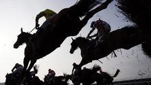 Sports pages love to talk of triumph and despair, and Cheltenham, with its heady brew of drama, bravery and danger, could see many an article reported to the stewards for overuse of the cliché whip.  (stock photo)