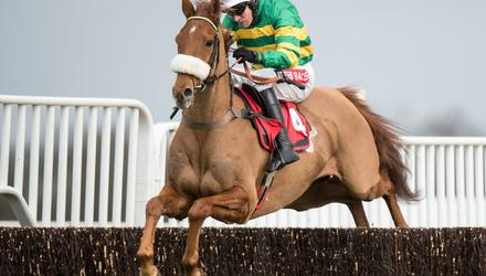 On a Plate: Modus, in action at Kempton during his Paul Nicholls' days, can show the benefit of a recent hurdles outing for Enda Bolger