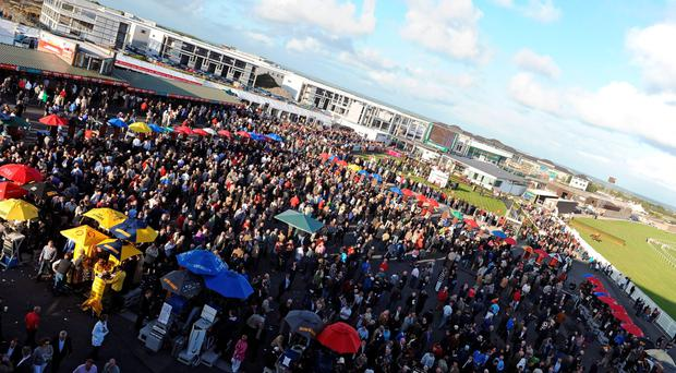 Galway Betting Ring