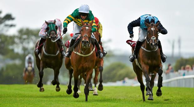 Jacksonslady, left, with Barry Geraghty up wins at Galway in 2014