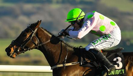 Sharjah can make the frame in the big one at Punchestown today. Photo: Sportsfile