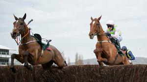 Monkfish and Paul Townend jumps the second last alongside the riderless Eklat De Rire before winning at Cheltenham last month. Photo: Edward Whitaker/Racing Post