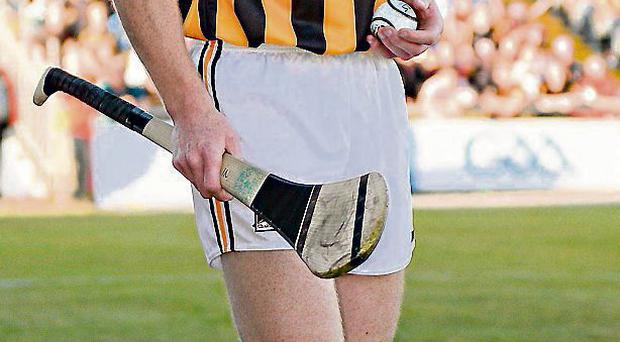 Henry Shefflin encourages his team-mates