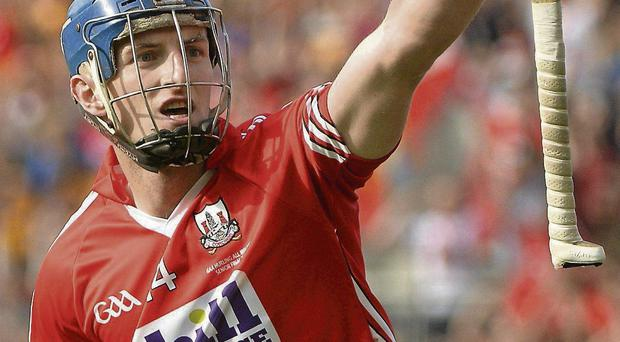 Patrick Horgan celebrates after scoring Cork's last point