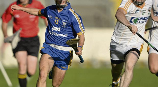 Cathal O'Connell races clear of Stephen McAfee
