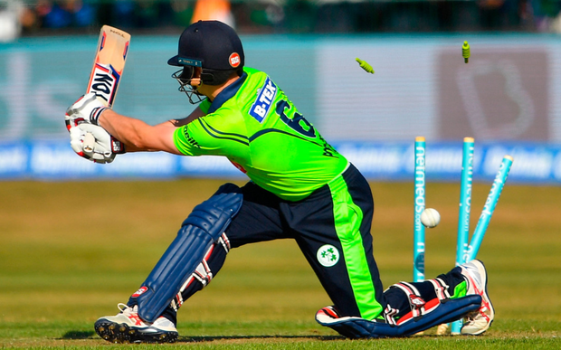 William Porterfield is bowled out by Umesh Yadav of India during the T20 International match at Malahide Cricket Club. Photo: Seb Daly