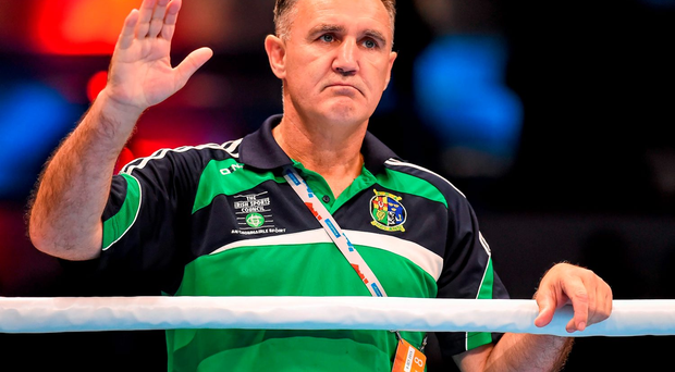 Billy Walsh Picture: Sportsfile