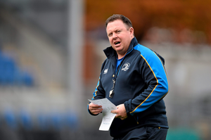 """Leinster may be without several of their first team players but Matt O'Connor is demanding that those that are not on international duty, take their chance ahead of what he described as a """"season-defining"""" two months for the province (Ramsey Cardy / SPORTSFILE)"""