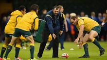 Wallabies coach Michael Cheika in action before the Autumn international match between Wales and Australia at Millennium Stadium