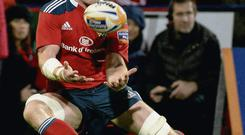 Concentration is the name of the game for Paul O'Connell as he tries to gather the ball at Musgrave Park