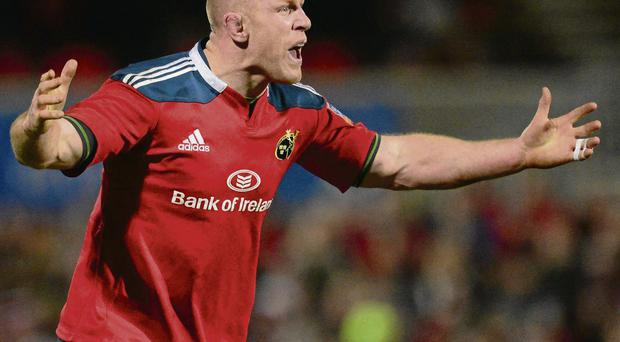Will Paul O'Connell i finish his career at his native province?