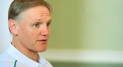 Joe Schmidt has been through the performance with a fine-tooth comb at this stage and found solace in the good that went with the bad