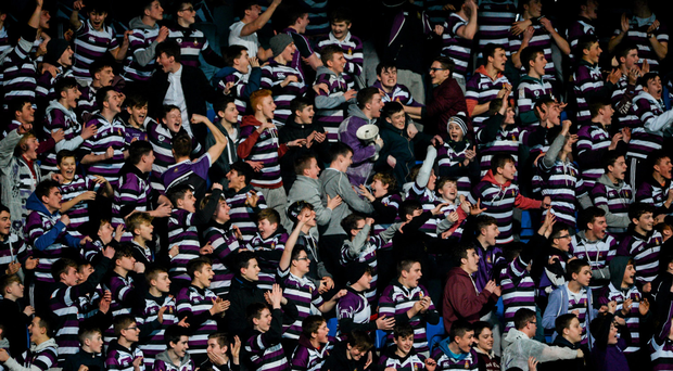 Terenure College supporters celebrate a try against St Mary's in their Bank of Ireland Leinster Schools Senior Cup clash at Donnybrook (Sportsfile)