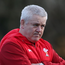 Warren Gatland is a target for Northampton