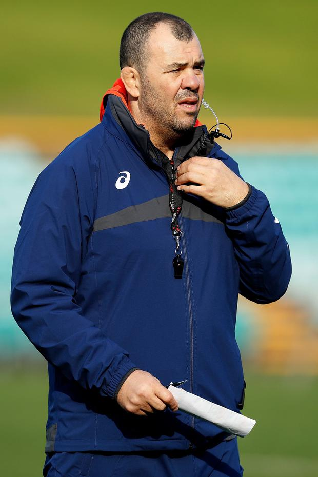 Australia head coach Michael Cheika. Photo: Getty