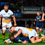 Luke McGrath's try just before half-time against Wasps summed up the team's ruthlessness. Photo: Sportsfile