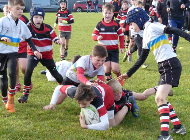 Action from the enthralling U-11s minis competition at Wicklow RFC