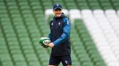 Taste of success Joe Schmidt at the Aviva Stadium. Photo by Ramsey Cardy/Sportsfile