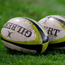 Ashbourne beat Gorey 19-13 last Saturday to maintain their slender one-point lead at the top of the Leinster League Division 1A table (stock photo)