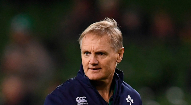 Schmidt is staying focussed on the job in hand. Photo: Sportsfile