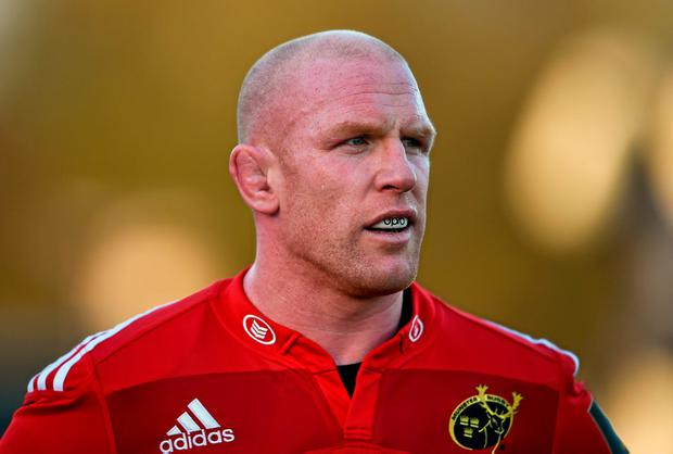 Paul O'Connell has joined Toulon on a two-year deal
