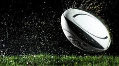 Last season, Edinburgh finished fifth in Conference B, missing out on fourth, and hopes of Champions Cup qualification for this year, by a single point to Scarlets (stock photo)