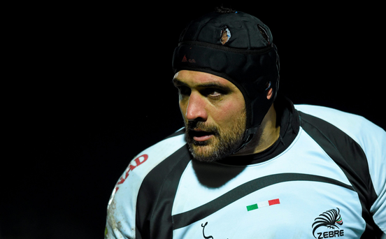 Marco Bortolami is among the Italian international contingent on the books at Zebre