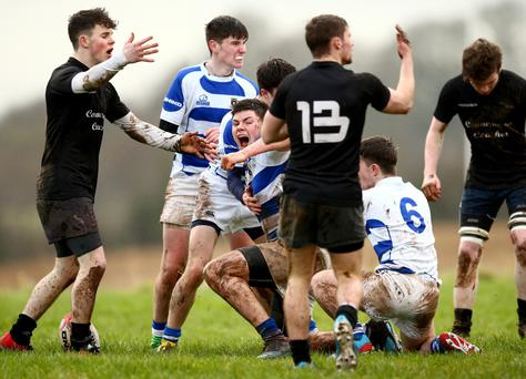 Garbally captain Micheal O'Neill celebrates scoring a try against Clifden CS (INPHO/James Crosbie)