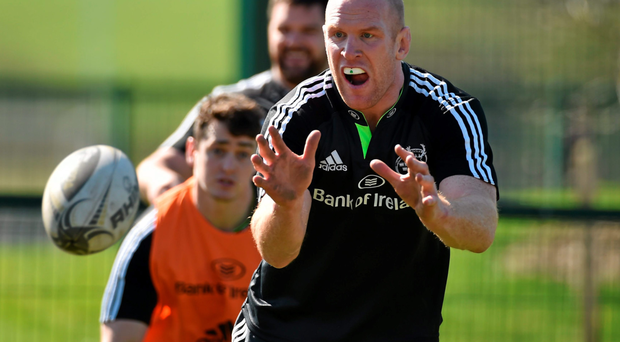 Munster's Paul O'Connell has had an outstanding season for club and country