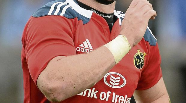 ' I've had to work unbelievably hard on my game since I came back to Munster,' admits Barry O'Mahony sportsfile