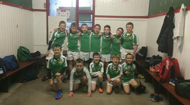 Dun: The U-11s who played at half-time in Irish Independent Park