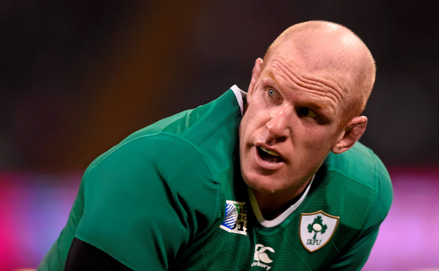 Paul O'Connell was harshly sin-binned against Canada as Ireland sent out a message