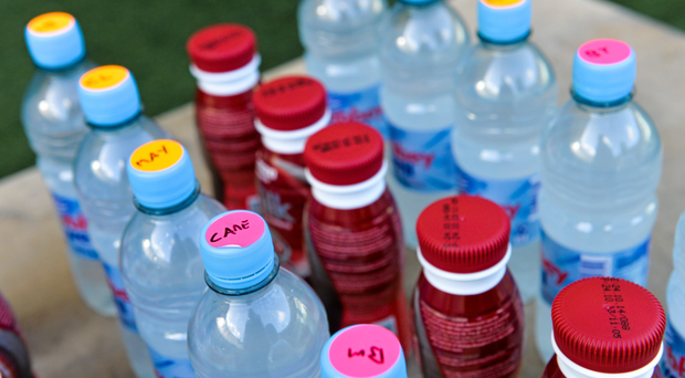 Guidance on the taking of supplements is vital (SPORTSFILE)