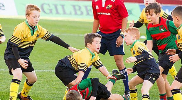 Gaels force brewing up a storm in Co Limerick