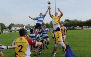 St. Marys rugby