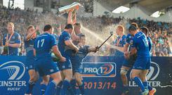 Independent.ie readers have voted for their greatest Leinster team of the professional era.